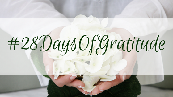 #28DaysOfGratitude | Life Coaching with MuseLaura