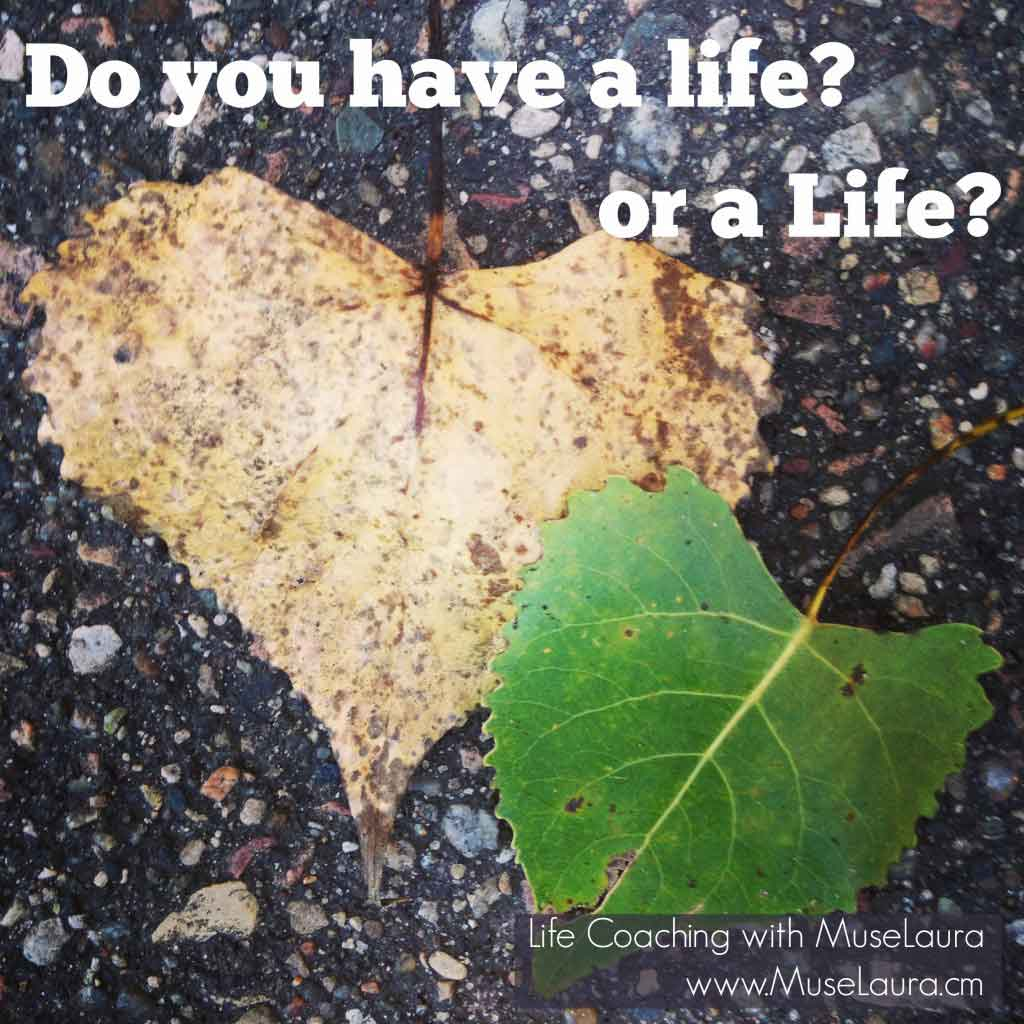 Do you have a life?   Life Coaching with MuseLaura