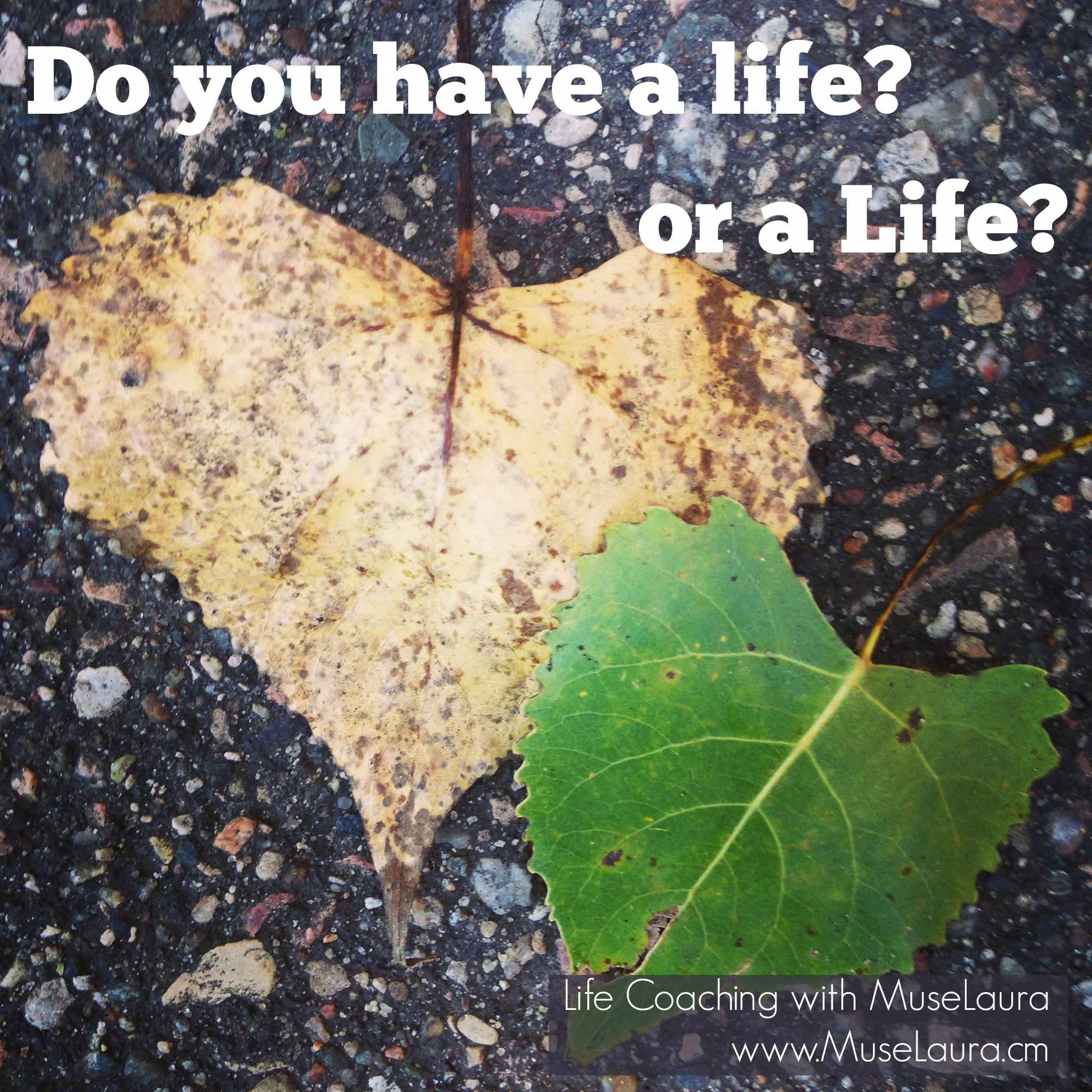 A Life Coaching Moment: Do you have a life or a Life?