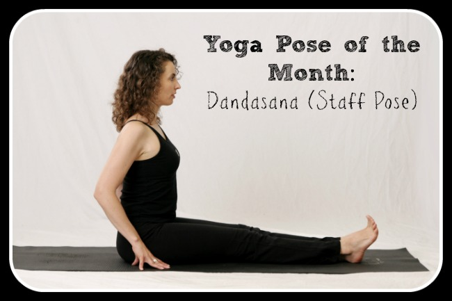 Study Points for the Yoga Pose of the Month: Dandasana (Staff Pose)