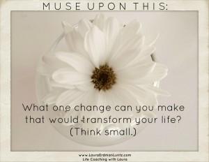 white flower, daisy
