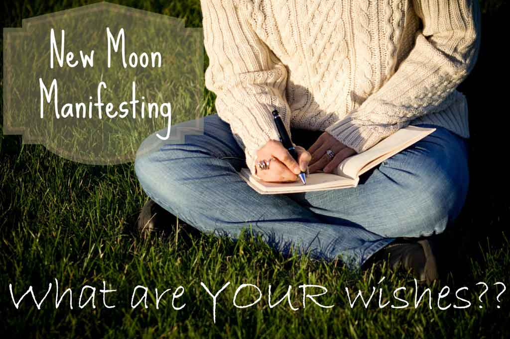 New Moon Manifesting | Life Coaching with MuseLaura
