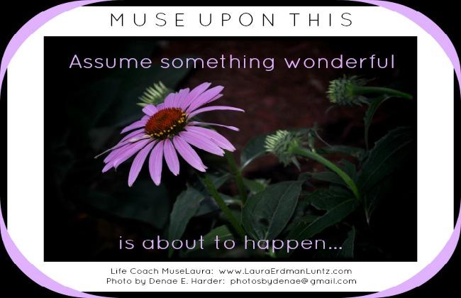 Musing: Assume something wonderful  Life Coaching with MuseLaura