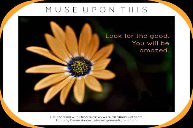 Musing: Look for the Good | Life Coaching with MuseLaura